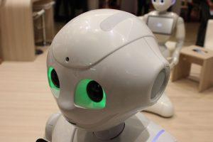 Sind Haushaltsroboter die Zukunft?